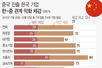 """中 내 韓기업 """"경영 여건 개선중 이지만 정부규제는 여전"""""""